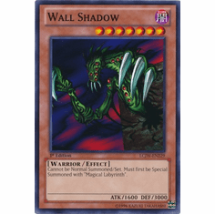 Wall Shadow LCJW-EN229 - YuGiOh Joey's World Common Card