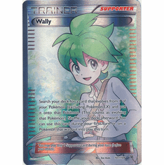 Wally 107/108 Full Art - Pokemon XY Roaring Skies Card