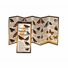 Common Butterflies of New England Folding Guide