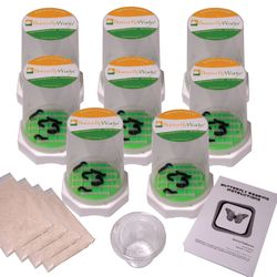 Painted Lady Caterpillar Growing Kit 40 Count