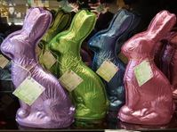 Big Bunnies - A Colorful Duo (click on photo for larger image)