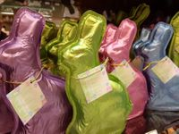 Pastel Bunnies - A Quadruplet of Solid Milk Chocolate Bunnies (click on photo for larger image) SOLD OUT!