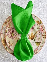 "20""x20"" Crushed Taffeta Napkin - Emerald Green 61338(1pc)"