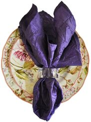 "20""x20"" Crushed Taffeta Napkin - Regency61363(1pc)"