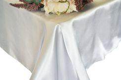 54x108 Rectangle Satin Tablecloth - Platinum 50950(1pc/pk)