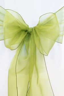 9x108 Crystal Organza Sashes - Moss Green 50717(10pcs/pk)