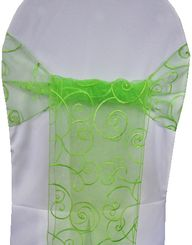 Sample Embroidered Organza Sash - Apple Green(1pc)