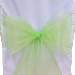Sample Organza Sash - Apple Green(1pc)