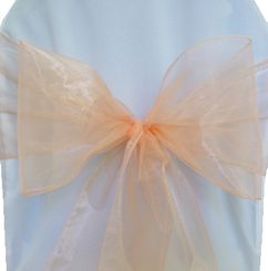 Sample Organza Sash - Apricot/Peach(1pc)
