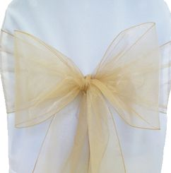 Sample Organza Sash - Champagne(1pc)