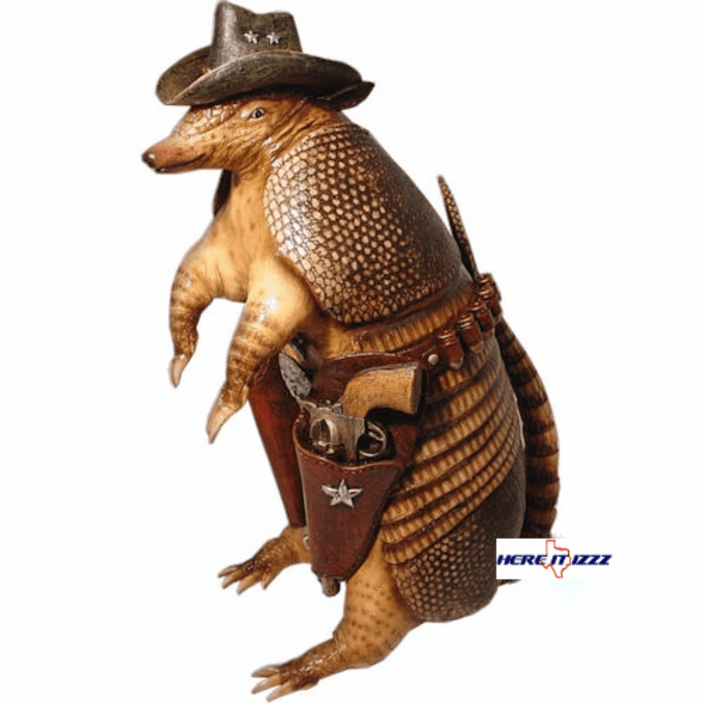 Armadillo Coin Piggy Bank