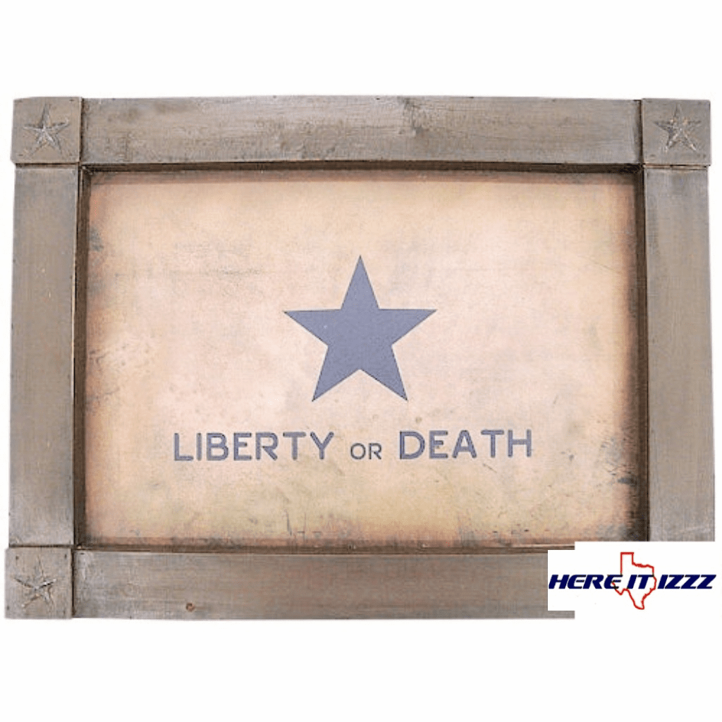 Liberty or Death Framed Art