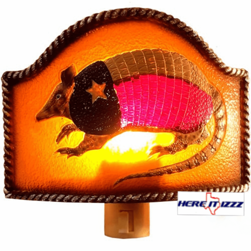 Texas Armadillo Night Light