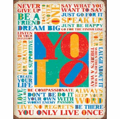 You Only Live Once Tin Signs