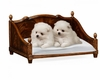 Jonathan Charles Fine Furniture - Buckingham Rectangular Four Poster Mahogany Dog Bed - 495072-BMA