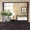 Modus Furniture - Nevis Landscape Mirror In Espresso - NV2383LG