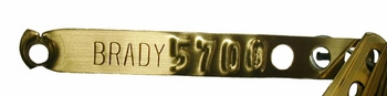 CUSTOMIZED BRASS leg bands (click HERE for prices)
