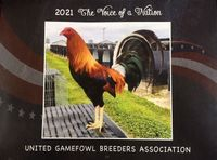 Calendar 2021  UGBA  ***Now in stock!***