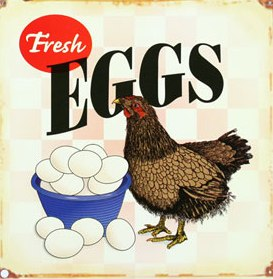 """Fresh Eggs""  Metal Sign"