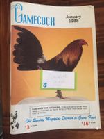 Gamecock 1988 whole year (11 issues)