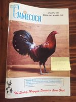 Gamecock 1991 whole year (11 issues)