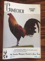 Gamecock 1982 whole year (11 issues)