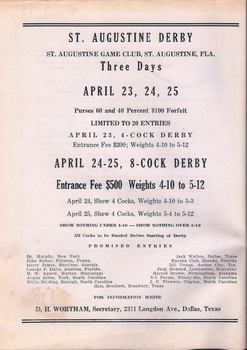 St. Augustine Derby ad, Feb. 1948 Feathered Warrior