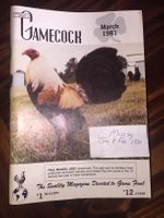 The Gamecock 1981
