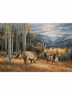 Meadow Music – Elk  Wrapped Canvas