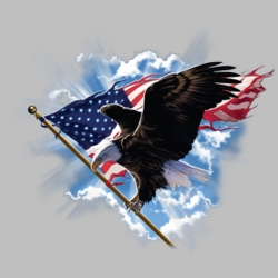 Patriotic T Shirts, for Men, 3X, 4X, 5X, Hats, Christian, Big and Tall, Baseball Caps, For Sale Hoodies Wholesale Women - 18280D1