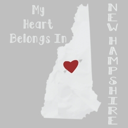 New Hampshire T Shirts Custom Hoodies Shop Buy Online Products - 21217EV4