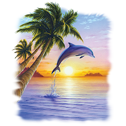 Bulk Wholesale Suppliers Graphic T-Shirts Dolphin Sun - 22338I2