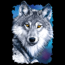 Bulk Wholesale Suppliers Graphic T-Shirts Wolf - 22355HD2