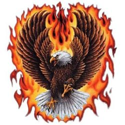 Eagle Flames T Shirts - A11310A
