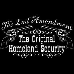 2nd Amendment Homeland Security T Shirts - a12783b