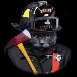 Funny Firefighters Cat T Shirts - a13258b