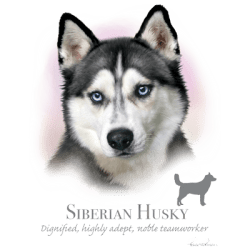 Best Online Shopping Bulk Wholesale Siberian Husky Dog Pet Cat Animal Lovers T Shirts - MSC Distributors