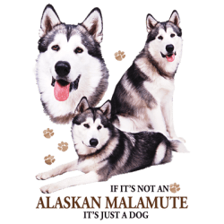 Shop Online Bulk Wholesale Alaskan Malamute Dog Pet Cat Animal Lovers T Shirts - MSC Distributors