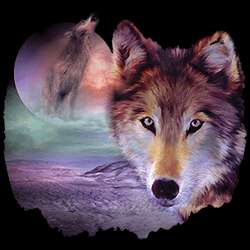 Bulk Wholesale Graphic T-Shirts Suppliers Wolf - 22113HD2
