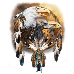 Wholesale Native American Bald Eagle Apparel Online Store Hats and T Shirts Suppliers - MSC Distributors