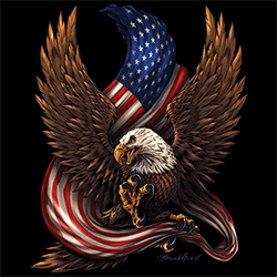 Custom T-Shirts Buy Design Best Store Online Shop Apparel Merchandise - Country Patriotic Eagle Flag American Men's Clothing Sweatshirts Hoodies Caps T Shirts Hats Graphic Wholesale - 22172HD2