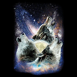 Animal Wildlife T-Shirts - Wolf T Shirts - MSC Distributors