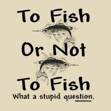 MSC Distributors : Funny Fishing T Shirts Men's Hats Wholesale Bulk Supplier - 21265