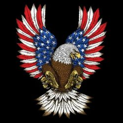 Wholesale Military Patriotic T Shirts - msc distributors