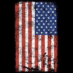 MSC Distributors: Shop Flag Patriotic Holiday Seasonal T Shirts Cheap Wholesale Bulk Suppliers - 22527EL2