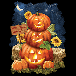 MSC Distributors: Shop Pumpkins Halloween Holiday Seasonal T Shirts Cheap Wholesale Bulk Suppliers - 22535HD2