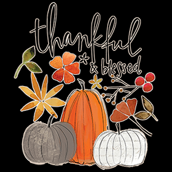 MSC Distributors: Shop Pumpkins Blessed Fall Holiday Seasonal T Shirts Cheap Wholesale Bulk Suppliers - 22573HD2