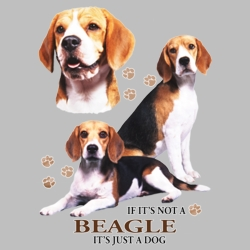 Wholesale Dog T Shirts Suppliers - 21353HD4 Beagle