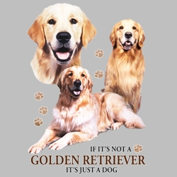 Wholesale Clothing and Apparel Drop Shipping - Golden Retreiver