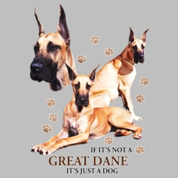 Wholesale Dog T Shirts Suppliers - Great Dane